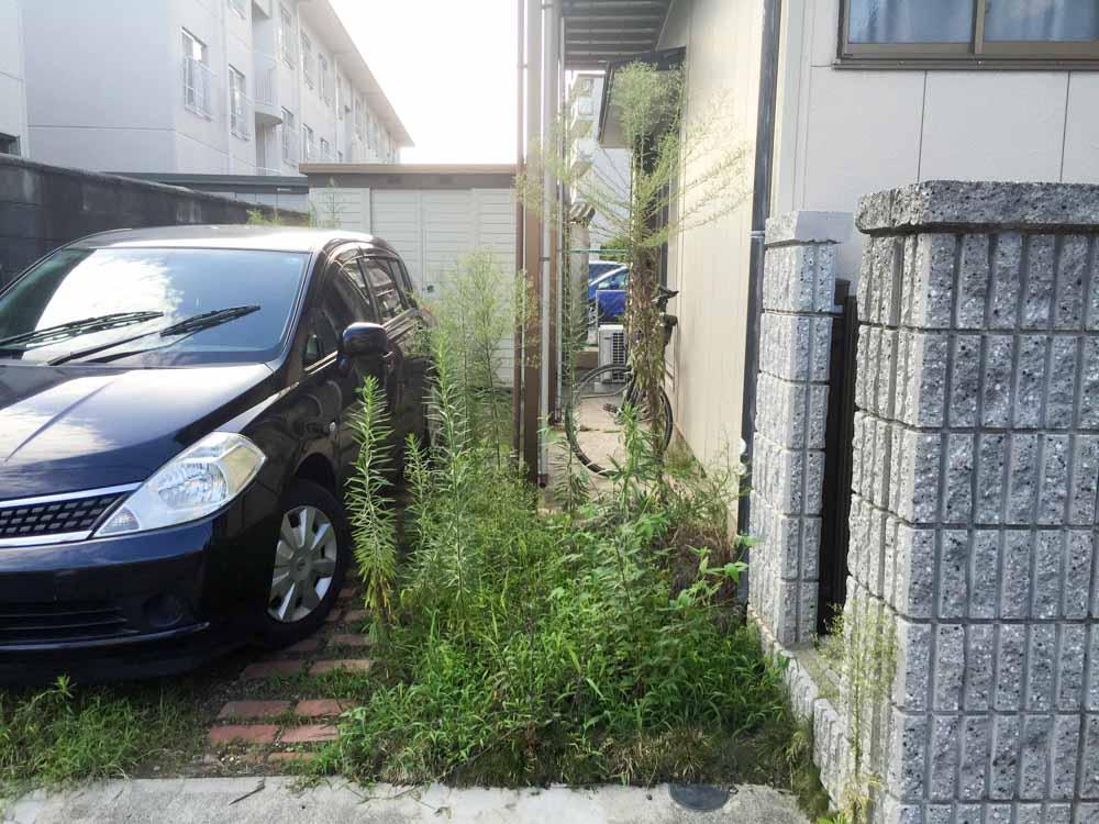 jyosouzai-1.jpg